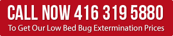 Call for Low Bed bug Extermination Prices