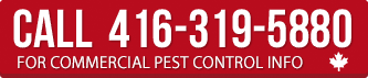 Call for commercial pest control info