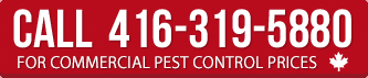 Call for commercial pest control prices
