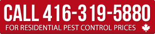 Call for Residential pest control prices