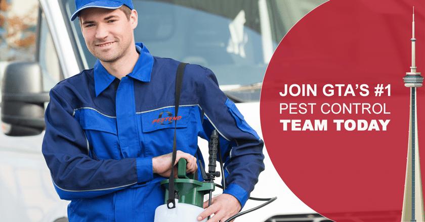 trainee pest control technician sydney branch job in sydney seek