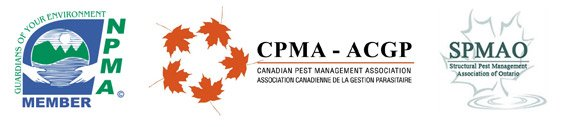 Memberships Pestend Pest Control Toronto