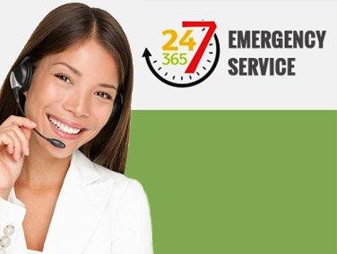 24/7 Pest Control Services